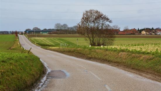 20190128 Marjan de Boer Schimmert.jpg