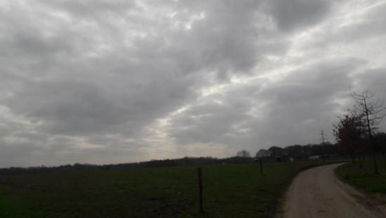 20190306 Hannie Peters Schinveld.jpg
