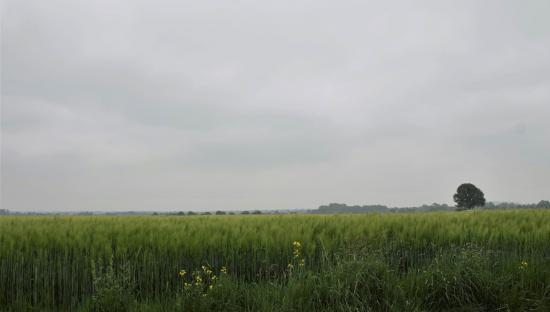 20190527 Jan Boneschansker Landgraaf.jpg
